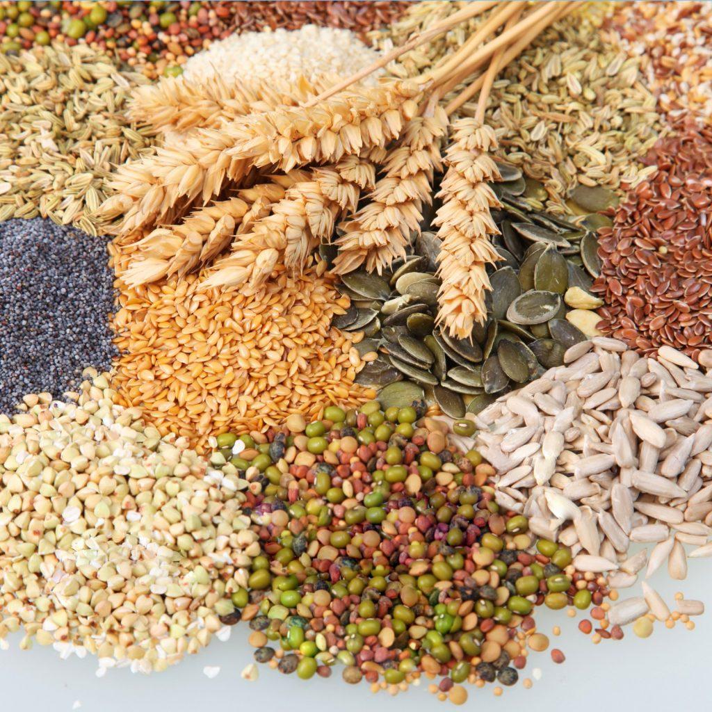 l'importanza dei cereali integrali